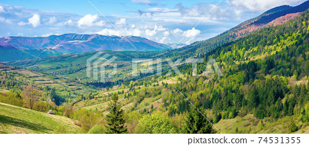 mountainous rural landscape in spring. green fields, pastures and trees on the hills rolling in to the distant ridge. sunny day with fluffy clouds on the sky 74531355