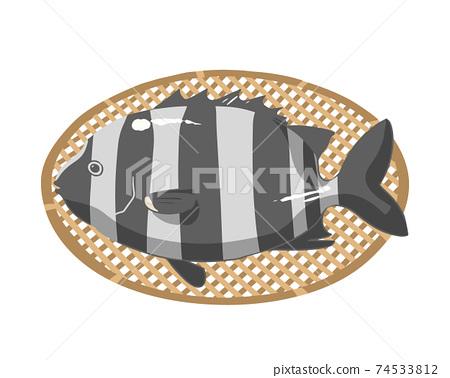 條紋的喙魚無線 74533812
