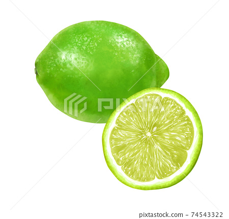 Illustration of one and half of lime and green lemon 74543322