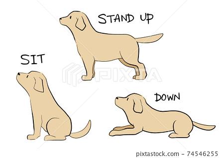 狗指令3種(彩色) 74546255