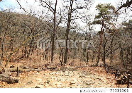 북한산.국립공원.계곡.탐방로  74551501