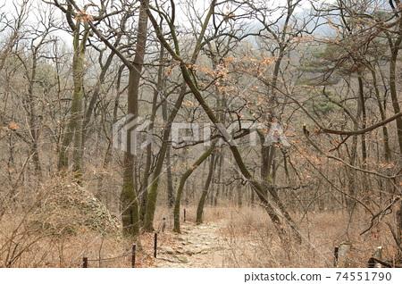 북한산.국립공원.탐방로.겨울에  74551790