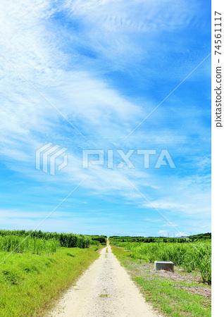 沖繩縣藍天下的Hateruma島 74561117