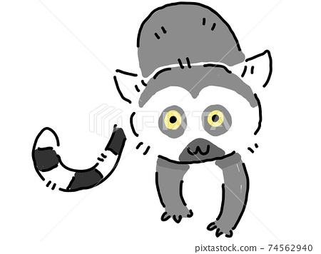 環尾狐猴好奇在這裡 74562940