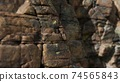 Solid rock with cracks close up 74565843