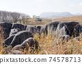Hiraodai Nature Park 74578713