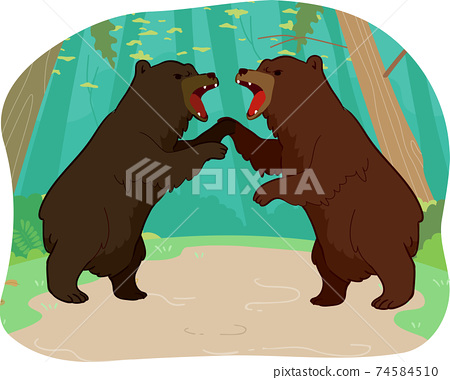 Competition Bears Illustration 74584510