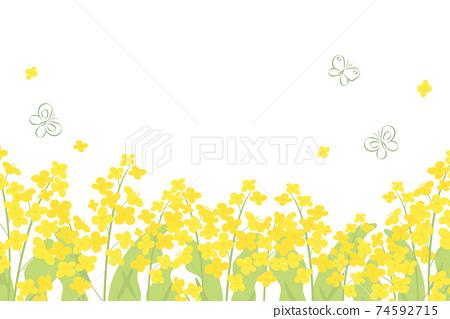 強姦花朵和蝴蝶的背景插圖 74592715