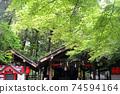 Blue maple of Nonomiya Shrine 74594164