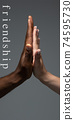 African and caucasian hands gesturing on gray studio background, tolerance and equality concept 74595730