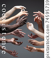 African and caucasian hands gesturing on gray studio background, tolerance and equality concept 74595739