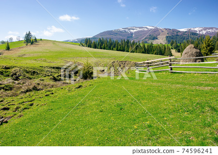 mountainous rural landscape in spring. haystack on a grassy field behind the wooden fence on rolling hills. snow capped ridge in the distance. beautiful countryside scenery on a bright sunny day 74596241