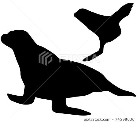 聰明的海獅剪影 74599636