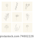 Floral elements. Collection of hand drawn plants. Set design elements in sketch style flowers and branches. Botanical icons 74602226