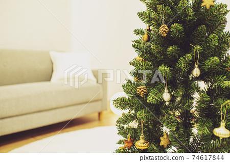 聖誕樹內政 74617844