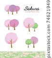 水彩風格的櫻花和草地的矢量圖 74621949