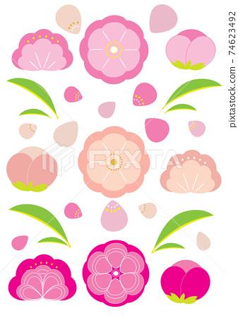 Peach blossoms 74623492