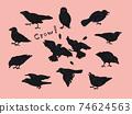 烏鴉的各種姿勢 74624563