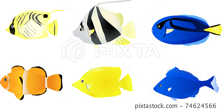 Cute tropical fish set in the tropical sea 74624566