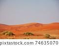 Sand desert in Namib 74635070