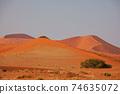 Sand desert in Namib 74635072