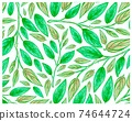 Illustration of Beautiful Philodendron Melanochrysum Plants Background 74644724