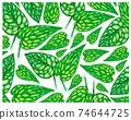 Illustration of Monstera Peru or Karstenianum Plants Background 74644725