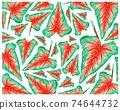 Illustration of Caladium, Elephant Ear or Colocasia Plants Background 74644732