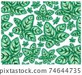 Illustration of Calathea Makoyana or Peacock Plants Background 74644735