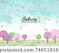 水彩風格的櫻花和草地矢量圖背景 74651916