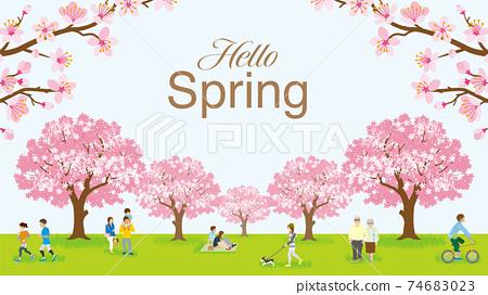 """꽃놀이를 즐기는 사람들 만개 한 벚꽃 문자가있는 """"Hello Spring"""" 74683023"""