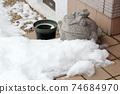 개구리 인형과 쌓인 눈 74684970