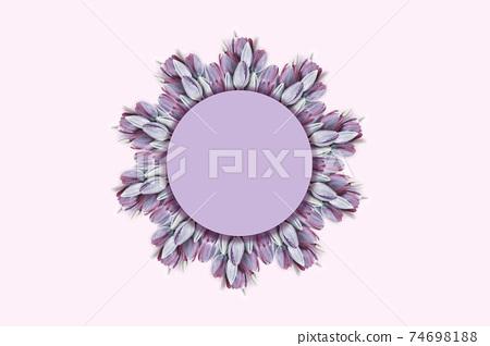 Wreath frame of purple tulip flowers. 74698188