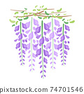 紫藤花切圖 74701546