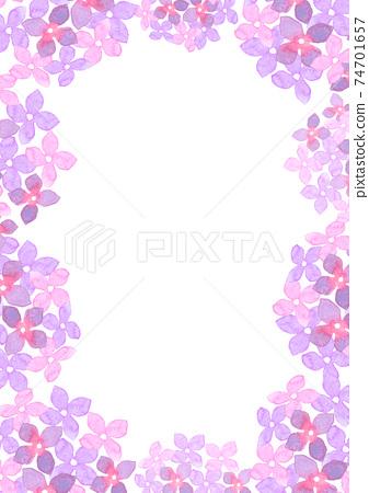 水彩畫的繡球花的插圖框架 74701657