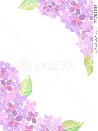 水彩畫的繡球花的插圖框架 74701658