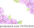 수채화로 그린 수국 그림 프레임 74701659