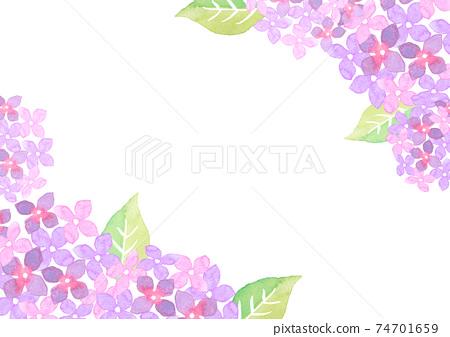 水彩畫的繡球花的插圖框架 74701659