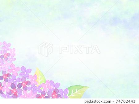 水彩畫的繡球花的背景插圖 74702443