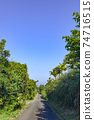 Road near Anbo on Yakushima 74716515
