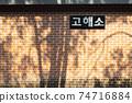 '고해소'라는 이름이 붙어있는 벽에 비친 나무 그림자 74716884