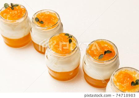 水果Bavarois果凍可愛橙色Bavarois果凍照片 74718983
