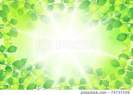 刷新新鮮的綠色背景材料 74735599