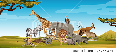 Group of wild african animal in the forest scene 74745074