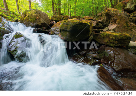 small waterfall in the forest. clean water of a mountain river flows among rock. spring nature background. lush green foliage on the trees on a sunny day 74753434