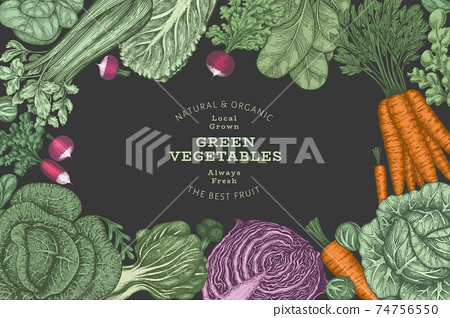 Hand drawn vintage color vegetables design. Organic fresh food vector banner template. Retro vegetable background. Traditional botanical illustrations. 74756550