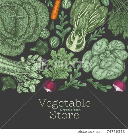 Hand drawn vintage color vegetables design. Organic fresh food vector banner template. Retro vegetable background. Traditional botanical illustrations. 74756558