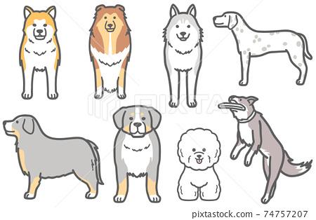 西伯利亞雪橇犬等狗的插圖 74757207