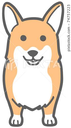 威爾士科基犬面對前方的插圖 74757223