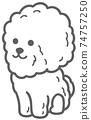 坐在比熊犬的插圖 74757250